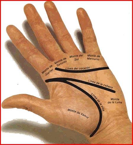 Quiromancia la lectura de las manos para saber tu futuro - Leer la mano hijos ...